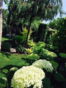 Kertészet Siófokon